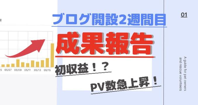 f:id:Toshiki831:20200518135136j:plain