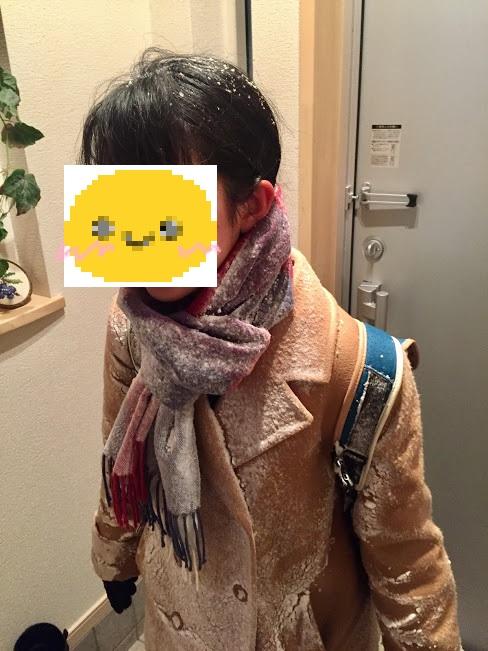 f:id:ToukoFujinomiya:20171227183544j:plain