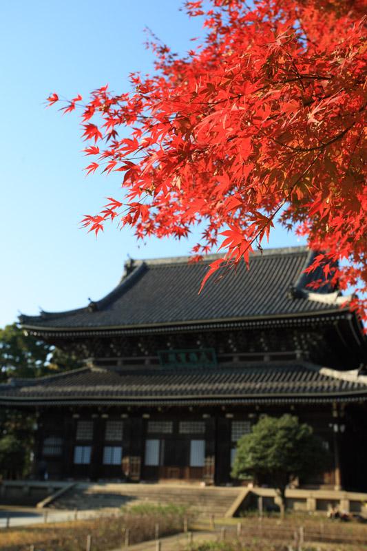横浜總持寺 仏殿