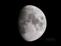 [天体]moon20080515