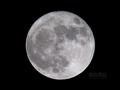 [天体]moon20080520