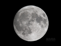[天体]moon20080717