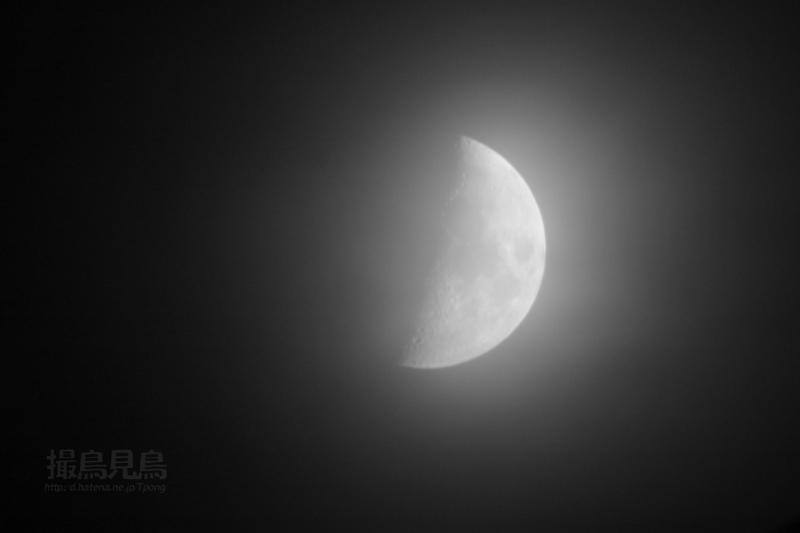 moon20080808