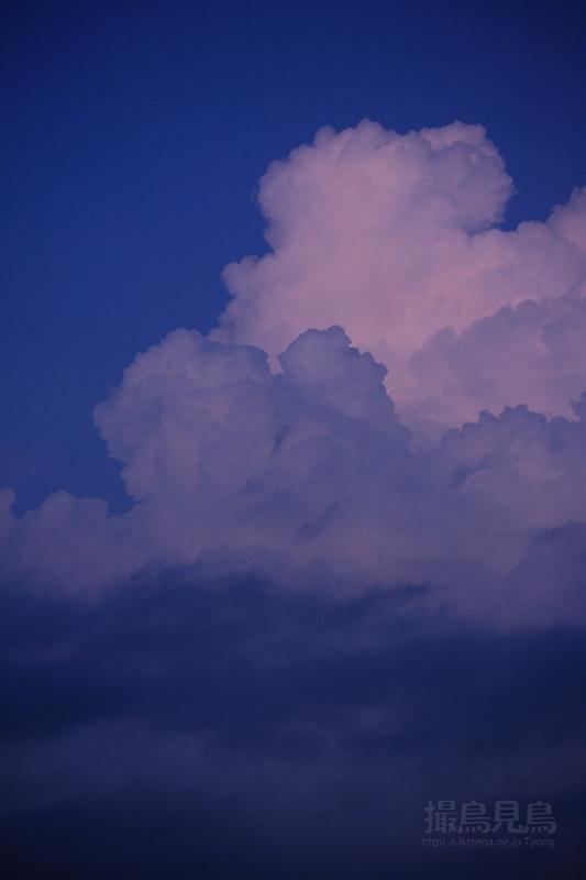 入道雲残照