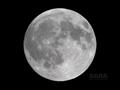[天体]moon20080816
