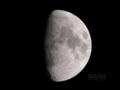 [天体]moon20080909