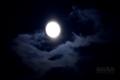 [月景色]moon20080913