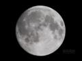 [天体]moon20080914(中秋の名月)