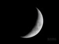 [天体]moon20081004