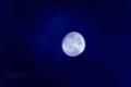 [月景色]moon20081012