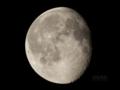 [天体]居待月moon20081018am