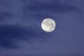 [月景色]夜明けの十六夜月moon20081016