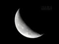 [天体]moon20081122