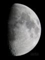 [天体]moon20081207