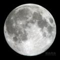 [天体]moon20081212