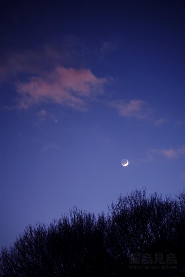 大晦日の黄昏(地球照の月と金星)