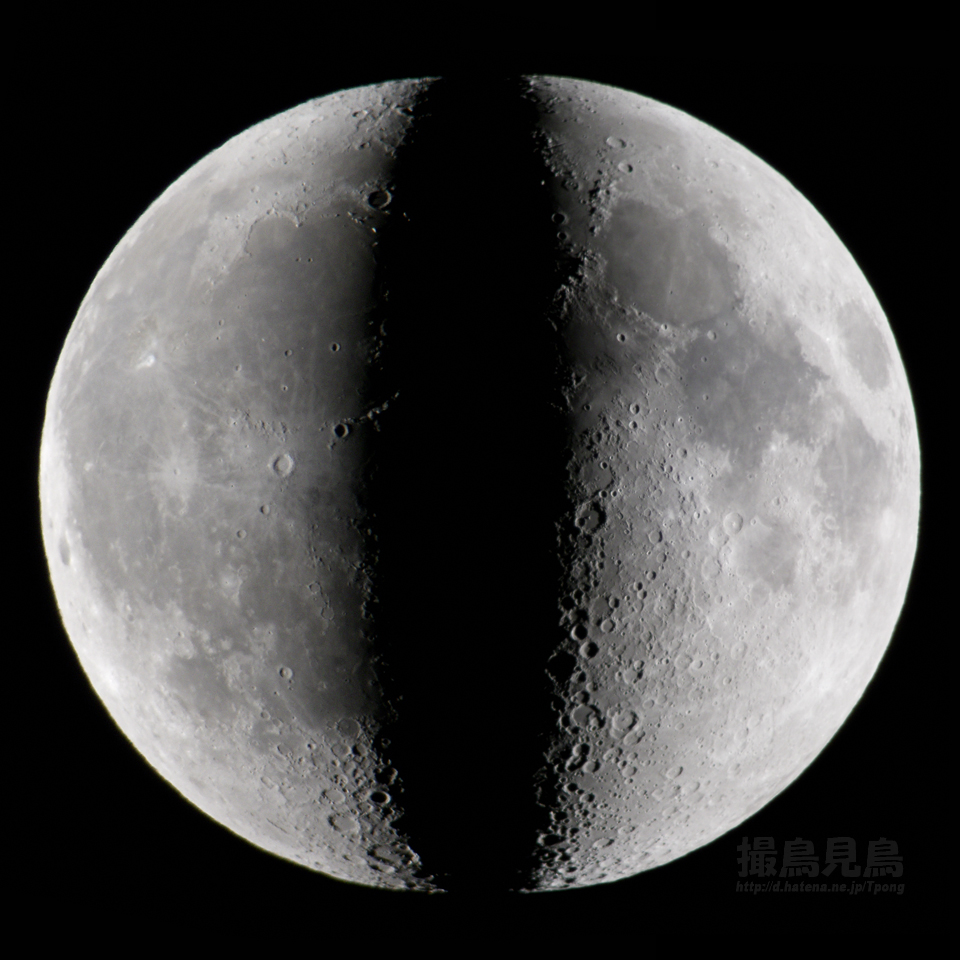 月面対称比較