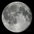[天体]moon20090905
