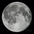 [天体]moon20091103