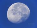 [天体]moon20091106