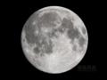 [天体]moon20091202am