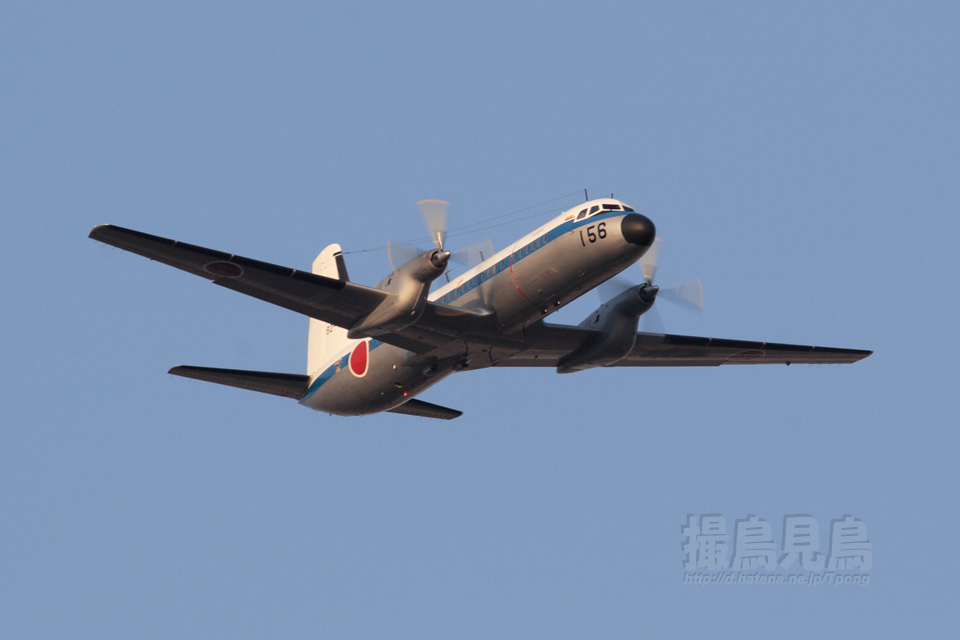 YS-11C