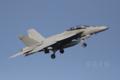 [航空]F/A-18F