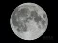 [天体]moon20100130