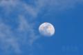 [風景][月景色]薄暮を昇る