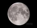 [天体]moon20100429