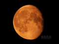 [天体]moon20100501(Daylight)