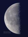 [天体]moon20100604am