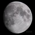 [天体]moon20100920
