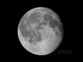 [天体]moon20100925