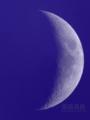 [天体]moon20101111