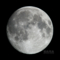 moon20101120