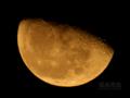 [天体]moon20101127