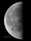 moon20101129