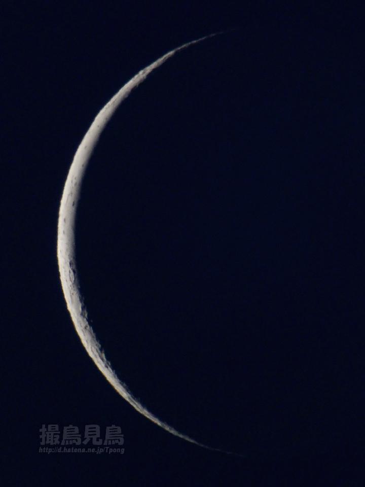 moon20101204