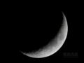 [天体]moon20101210