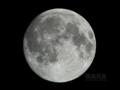 [天体]moon20101220