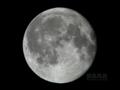 [天体]moon20101222