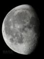 [天体]moon20101225