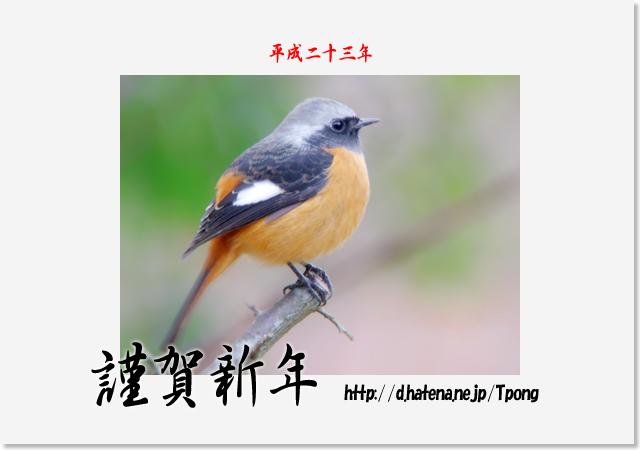 f:id:Tpong:20110101002851j:image