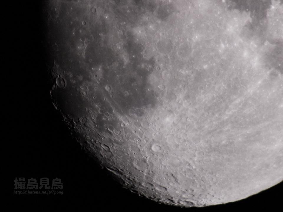 moon20110810tycho