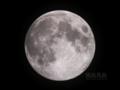 [天体]moon20110813