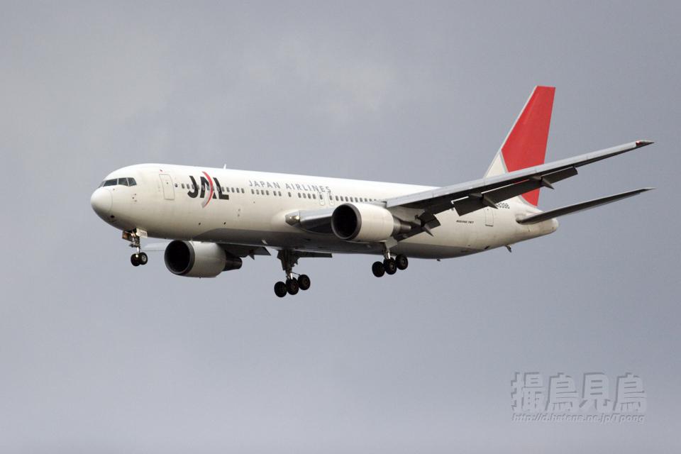 JAL_B767-300