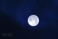 [月景色]雲間の望月