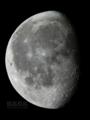 [天体]moon20111114