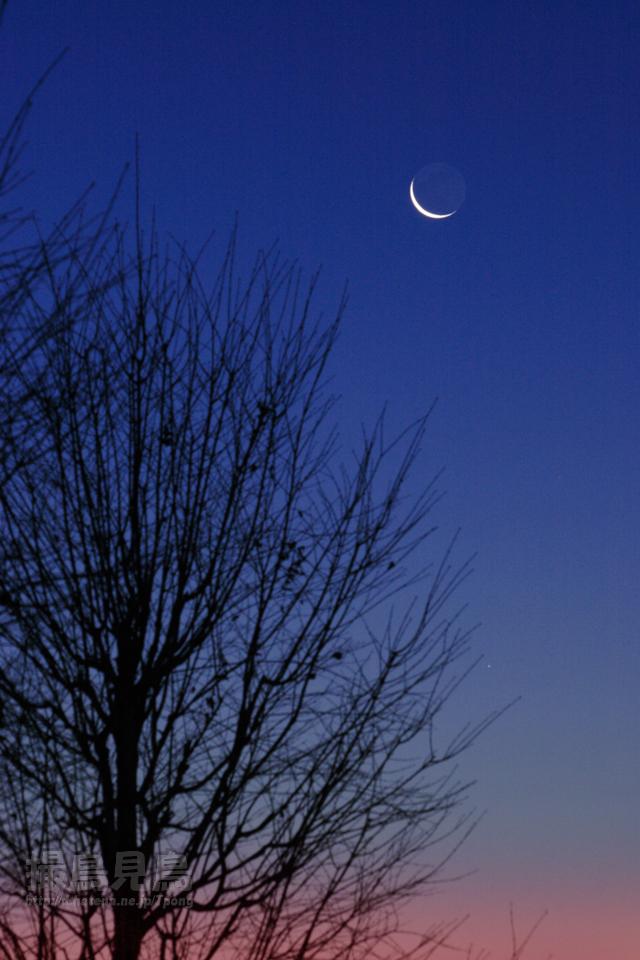 夜明けの地球照